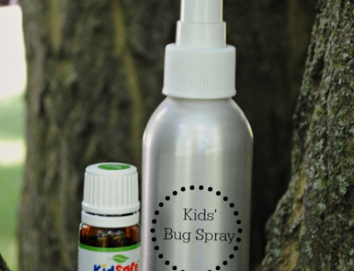 Easy DIY bug spray